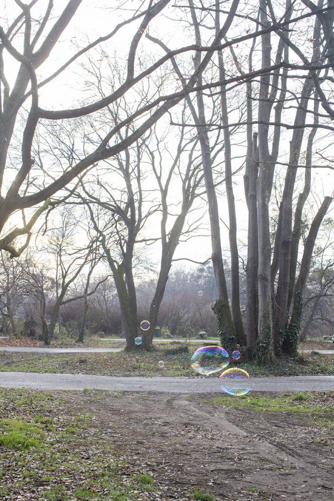 빈 공원 비눗방울