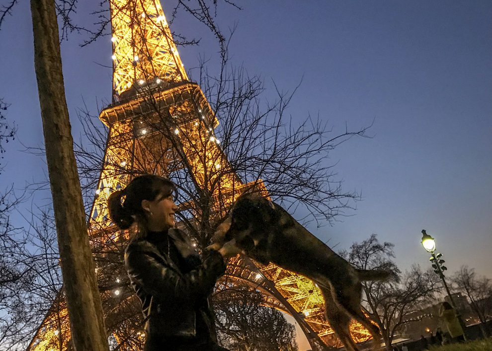 파리 애펠탑의 저녁